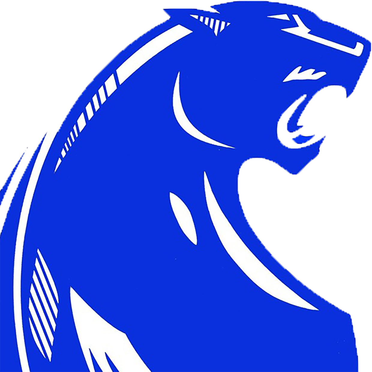 Parlier Panthers