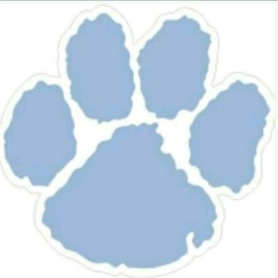 Camden County Wildcats