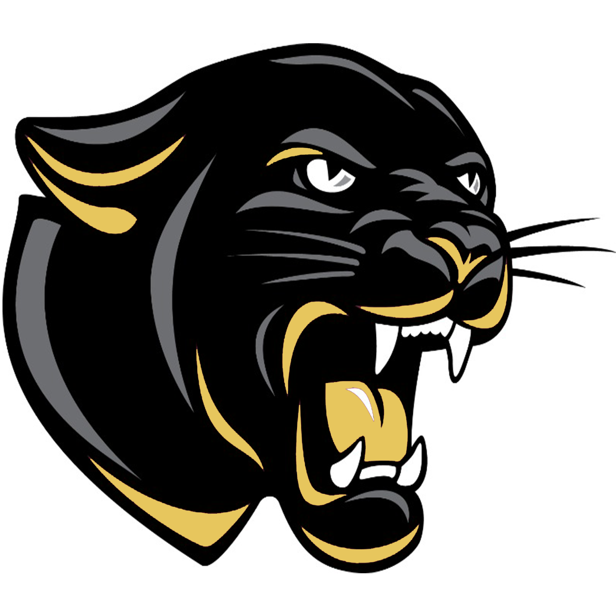 Corydon Central Panthers