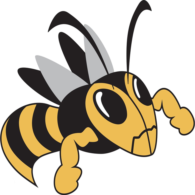 Fulton  mo  hornets logo
