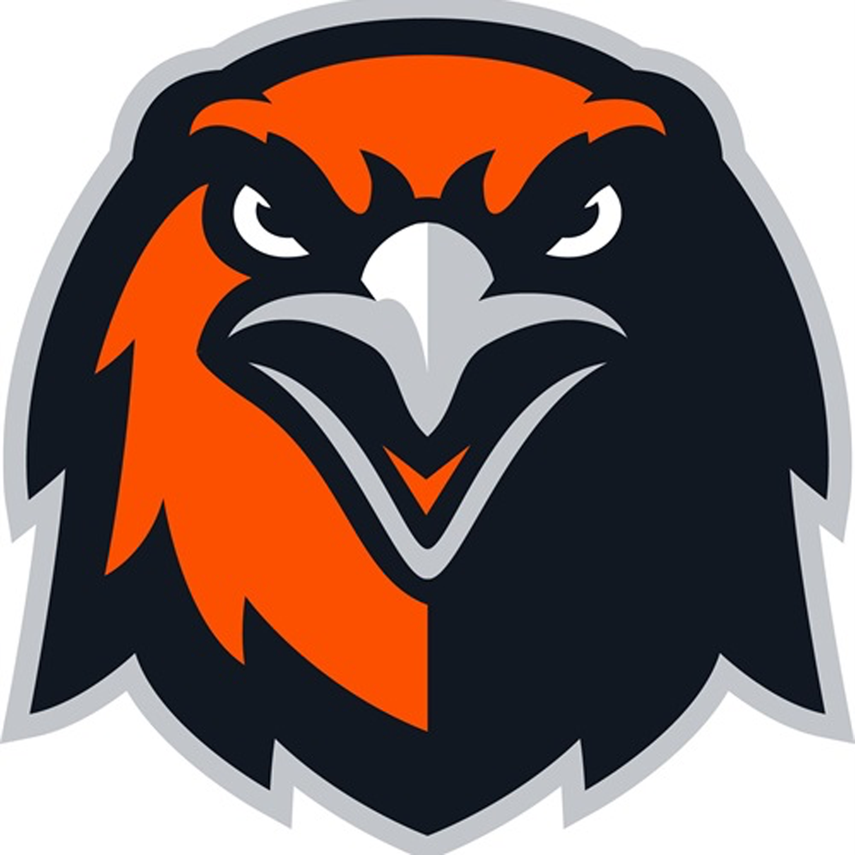Grand rapids  mn  thunderhawks