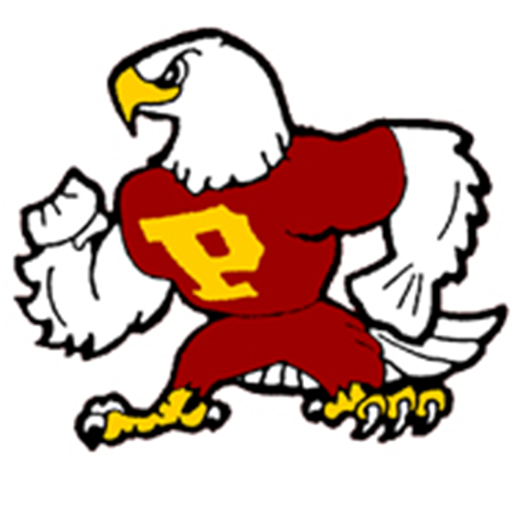 Prairie Falcons