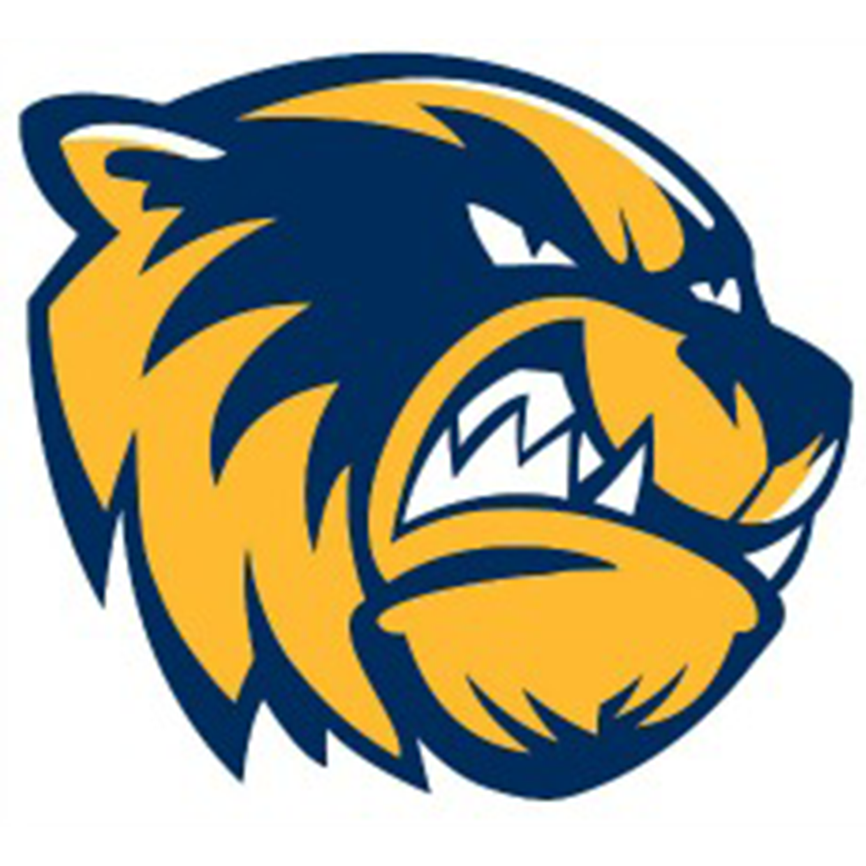 Bellevue Wolverines