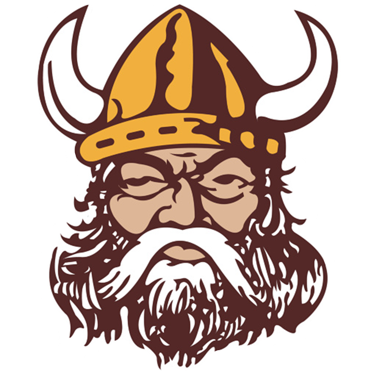 Vincent Vikings