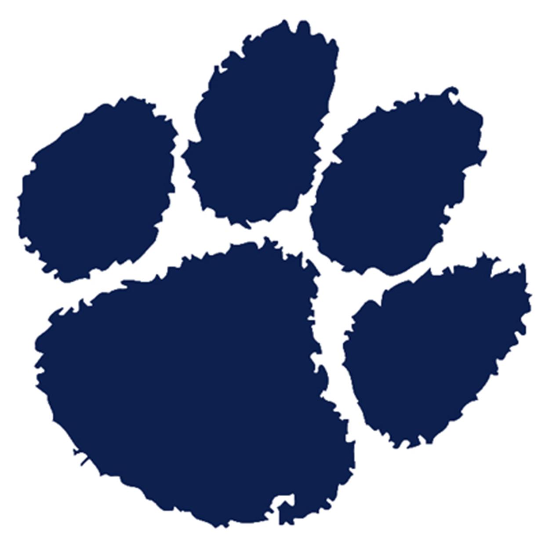 Bothell  wa  cougars logo