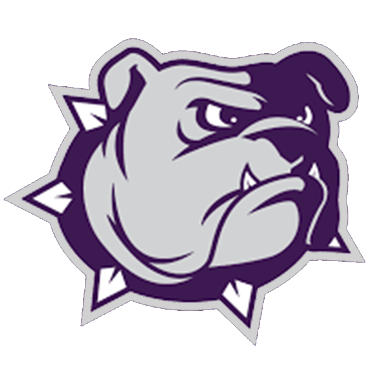 Pasco Bulldogs