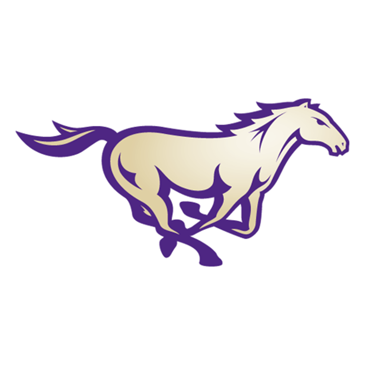 Central Arkansas Christian logo