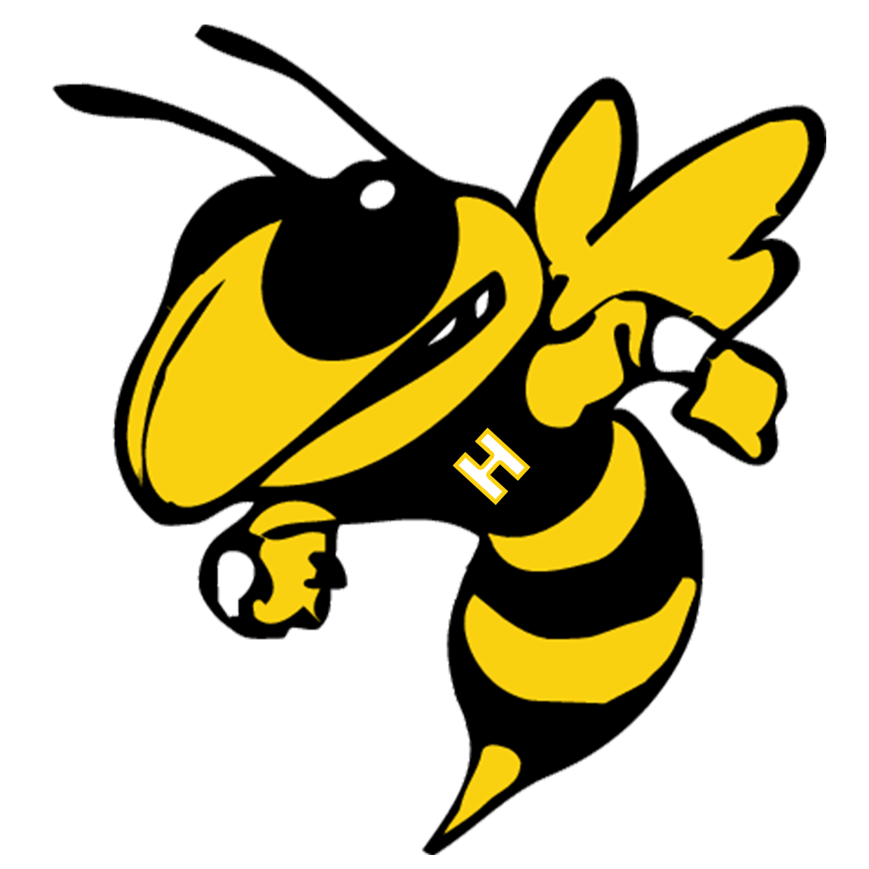 Indianapolis Howe Hornets