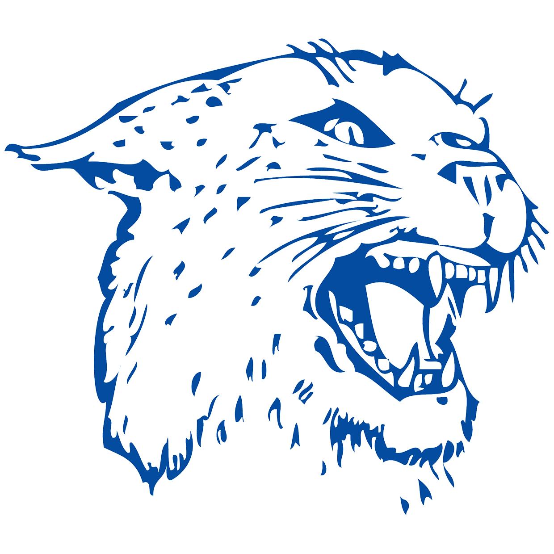 Colton Wildcats