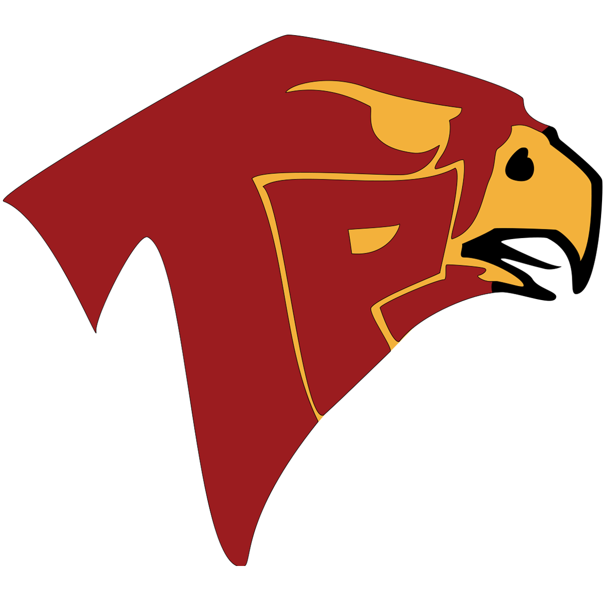 Torrey Pines Falcons