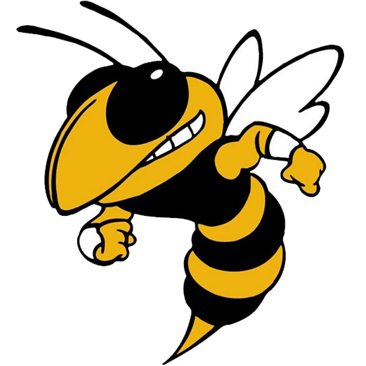 Ithaca Yellowjackets