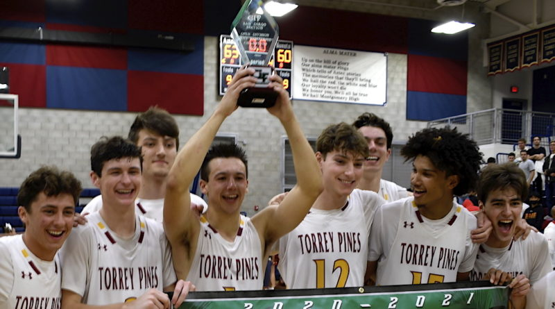 torrey pines basketball